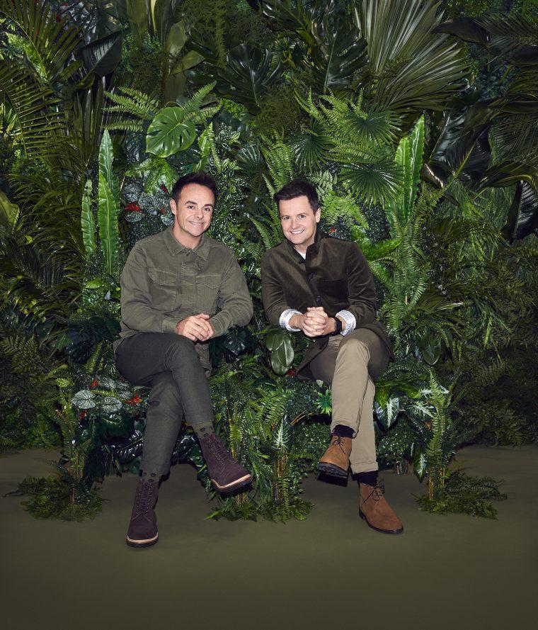 Jungle here we come!