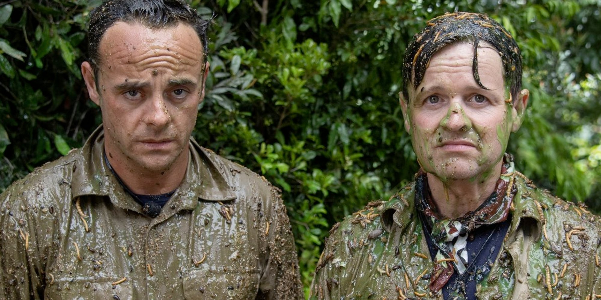 Ant & Dec finally Bushtucker'd!